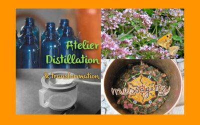 ATELIER DISTILLATION DE PLANTES ET EAUX FLORALES