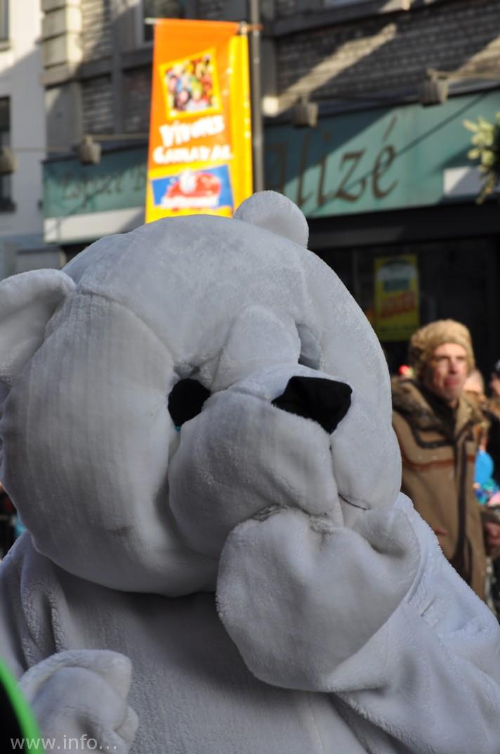 images/stories/PHOTOSREP/Bastogne/carnaval2014/infoluxbastogne72