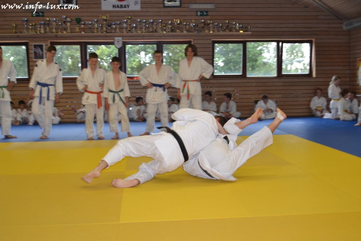 Remise des ceintures du Judo Club d'Habay