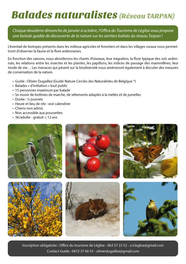 Balades naturalistes en 2015 à Léglise