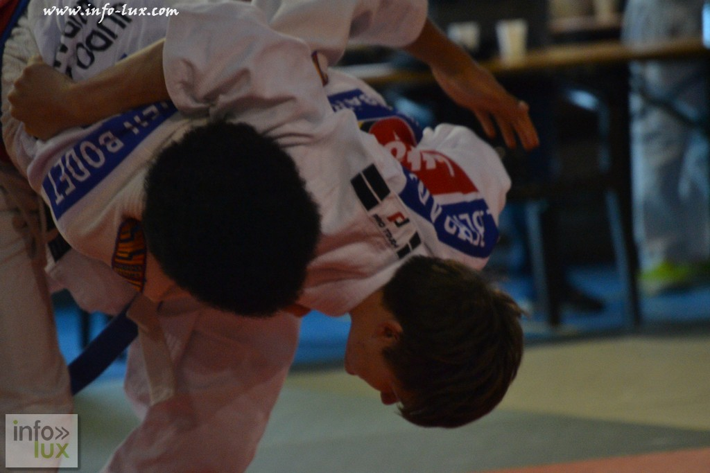 images/stories/PHOTOSREP/Tenneville/Judo/infolux-judo025