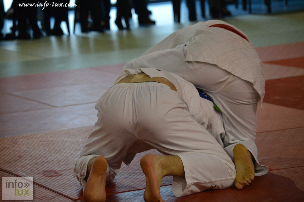 images/stories/PHOTOSREP/Tenneville/Judo/infolux-judo029