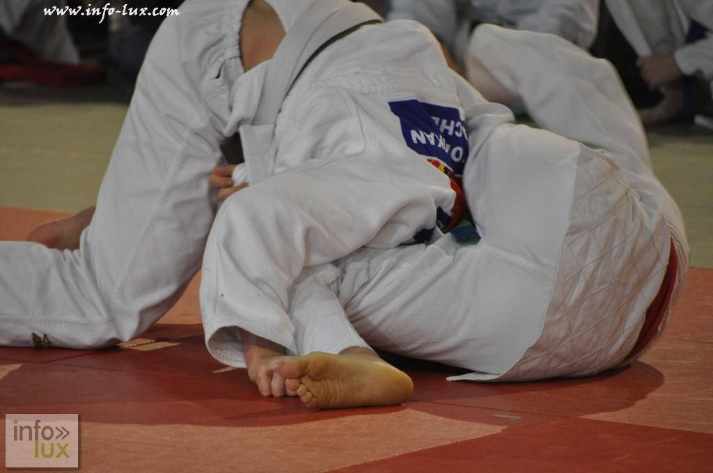 images/stories/PHOTOSREP/Tenneville/Judo/infolux-judo213