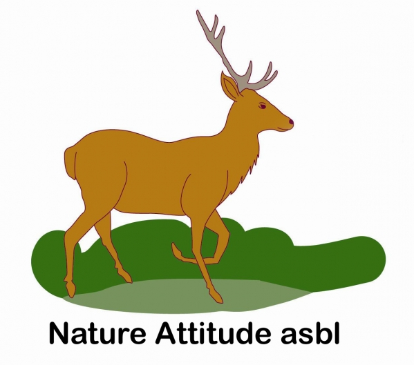 Logo nature attitude