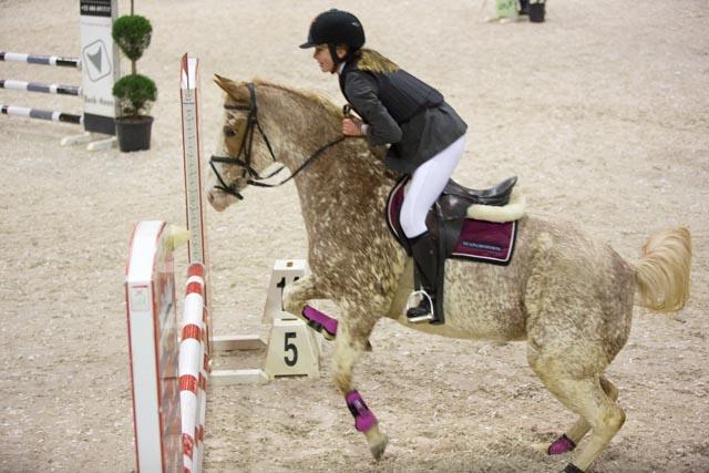 jumping, le Palais 6 du WEX de Marche-en-Famenne