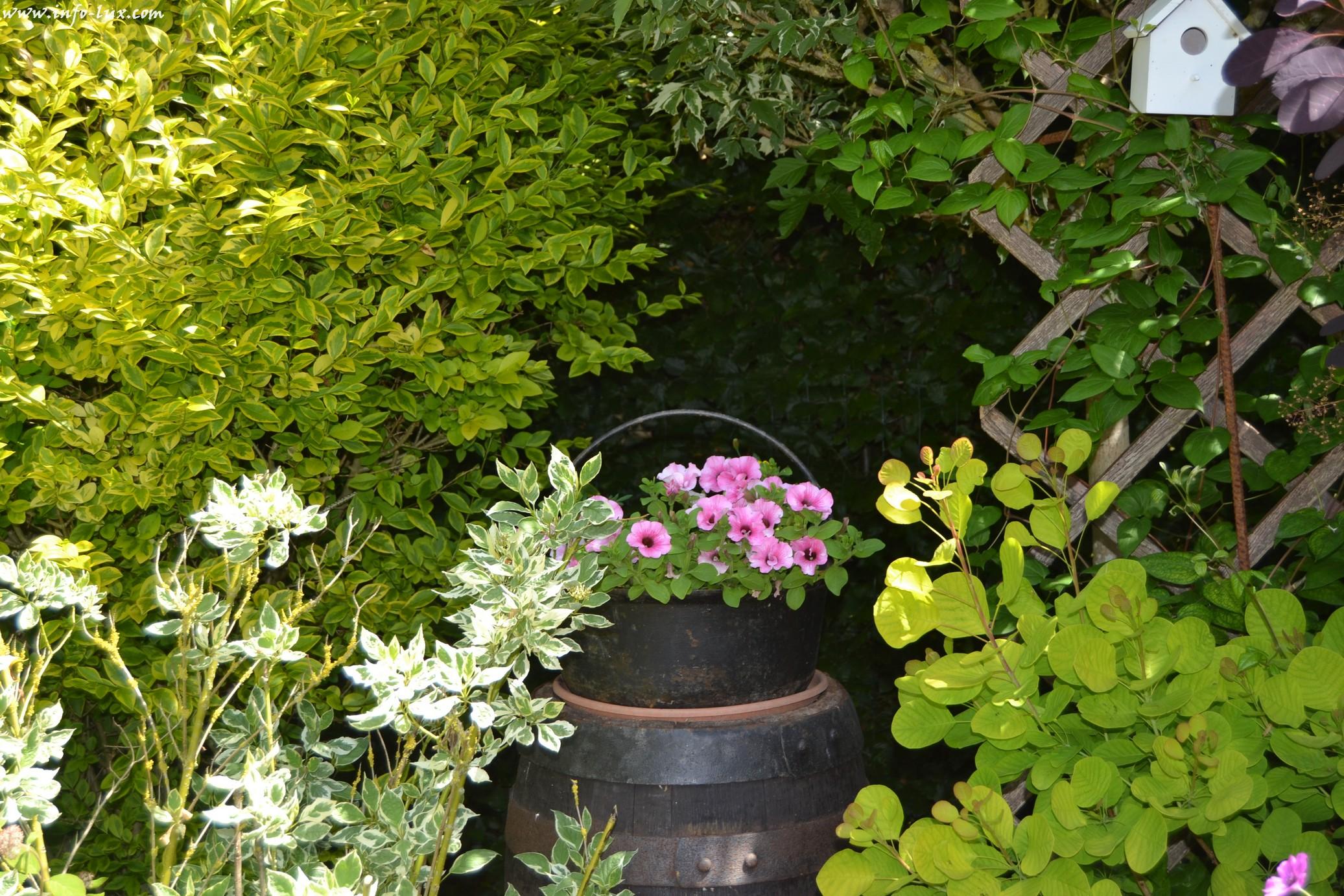 images/stories/PHOTOSREP/neufchateau/jardin1/Jardinen0032