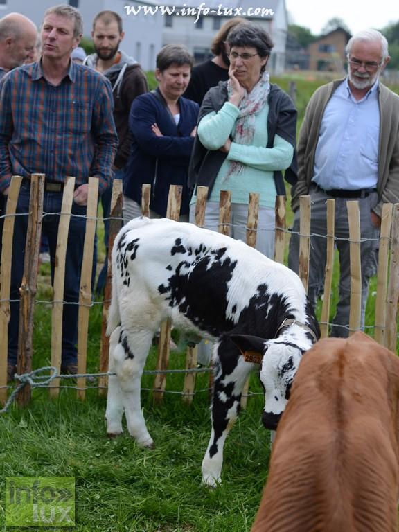 Photos Weekend de la viande à Petitvoir (Neufchâteau)