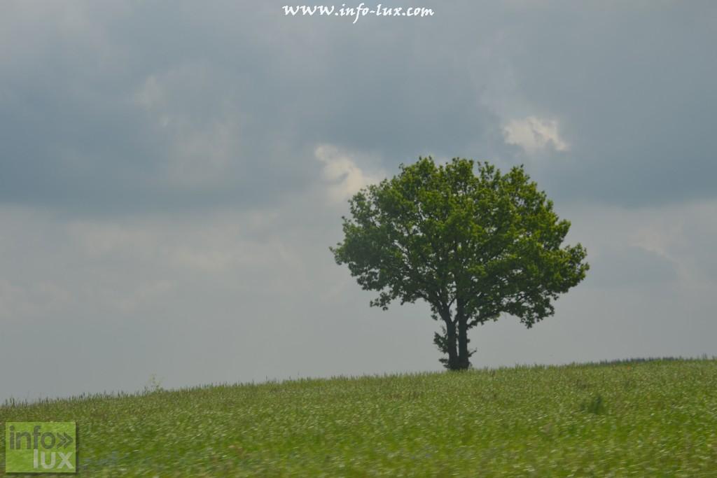 images/stories/PHOTOSREP/Saint-Hubert/mailimelo3/mailimailot002