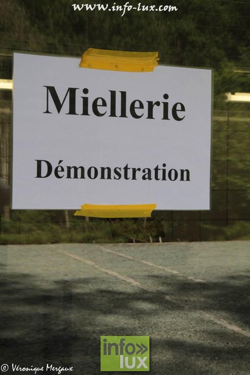 images/stories/PHOTOSREP/Saint-Hubert/Miel/Miel0045
