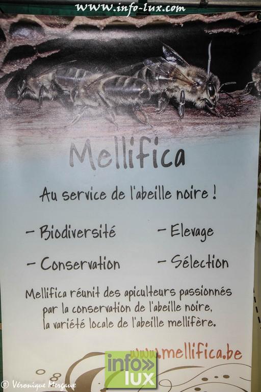 images/stories/PHOTOSREP/Saint-Hubert/Miel/Miel0050