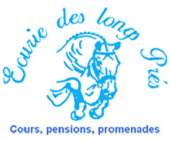 Transinne : août 2015 stage équestre