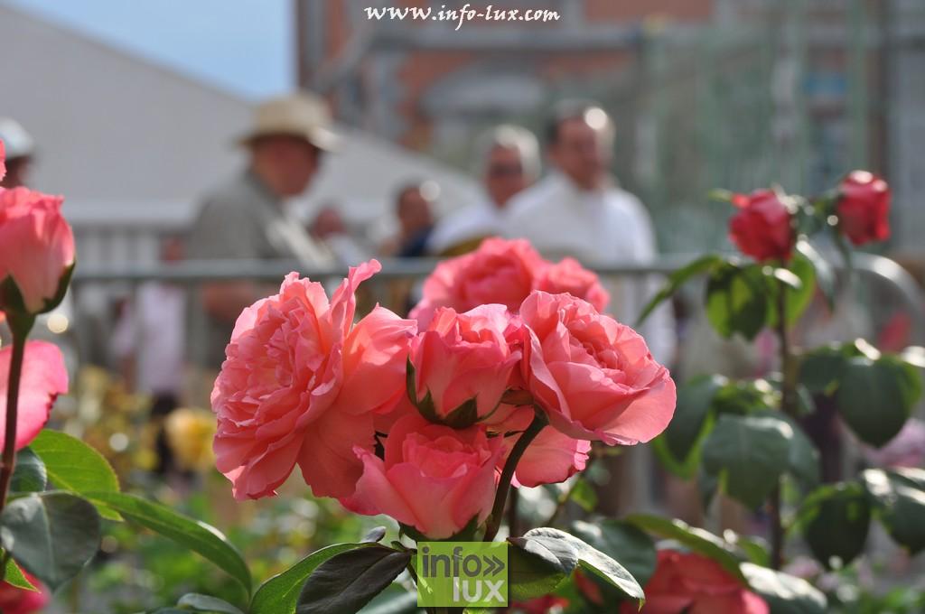 Week-end de la Rose Saint-Hubert – photos Reportage