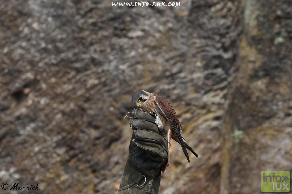 images/stories/PHOTOSREP/Bouillon/medival1a/Bouillon006