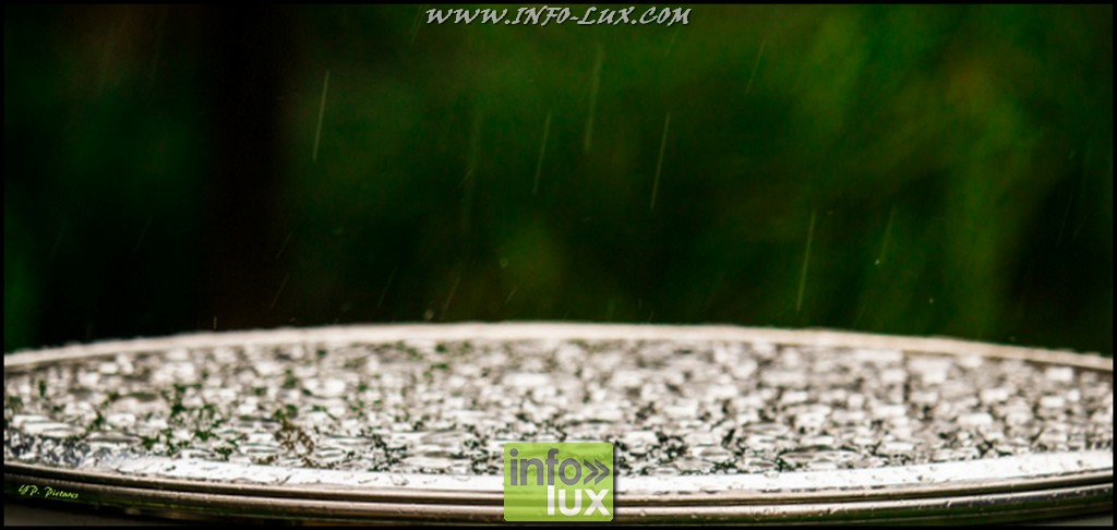 images/stories/PHOTOSREP/Houffalize/Onaturel2/Naturel004