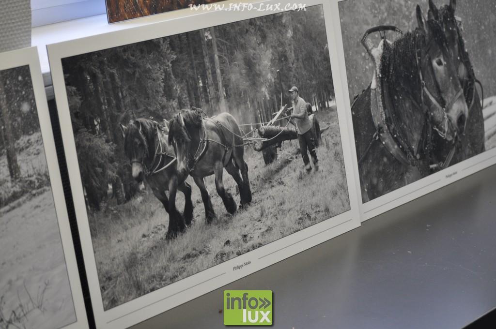 images/stories/PHOTOSREP/Houffalize/Onaturel/naturel315