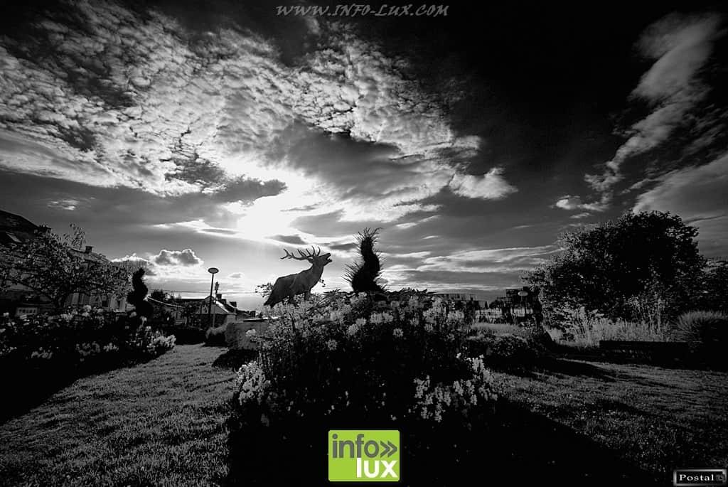 images/PORTRAITS/Arlon/Postal/Arlon/DSC_2249