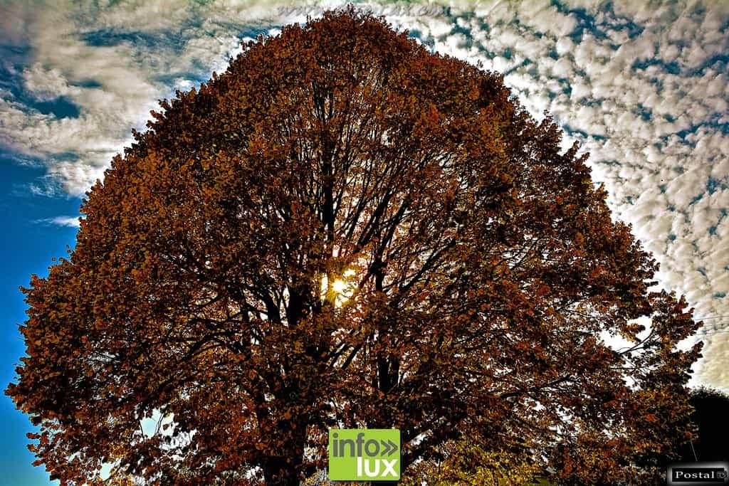 images/PORTRAITS/Arlon/Postal/Nature/DSC_9560