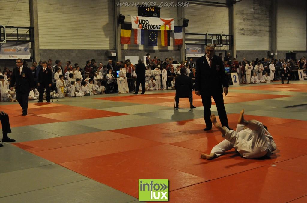 images/stories/PHOTOSREP/Bastogne/Judo2015/Judo-Bastogne10018