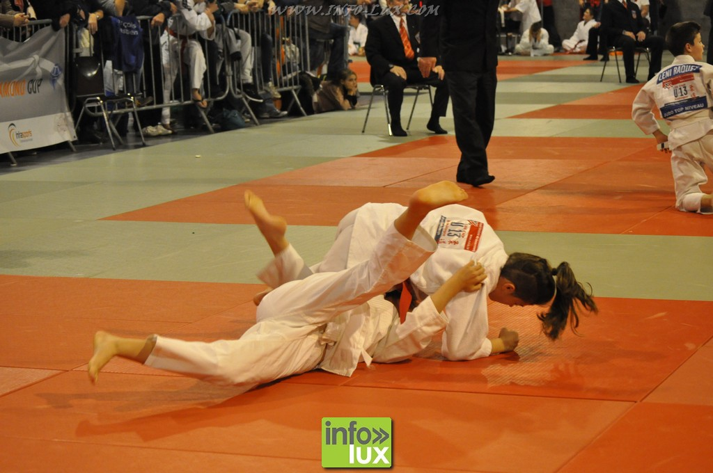 images/stories/PHOTOSREP/Bastogne/Judo2015/Judo-Bastogne10064