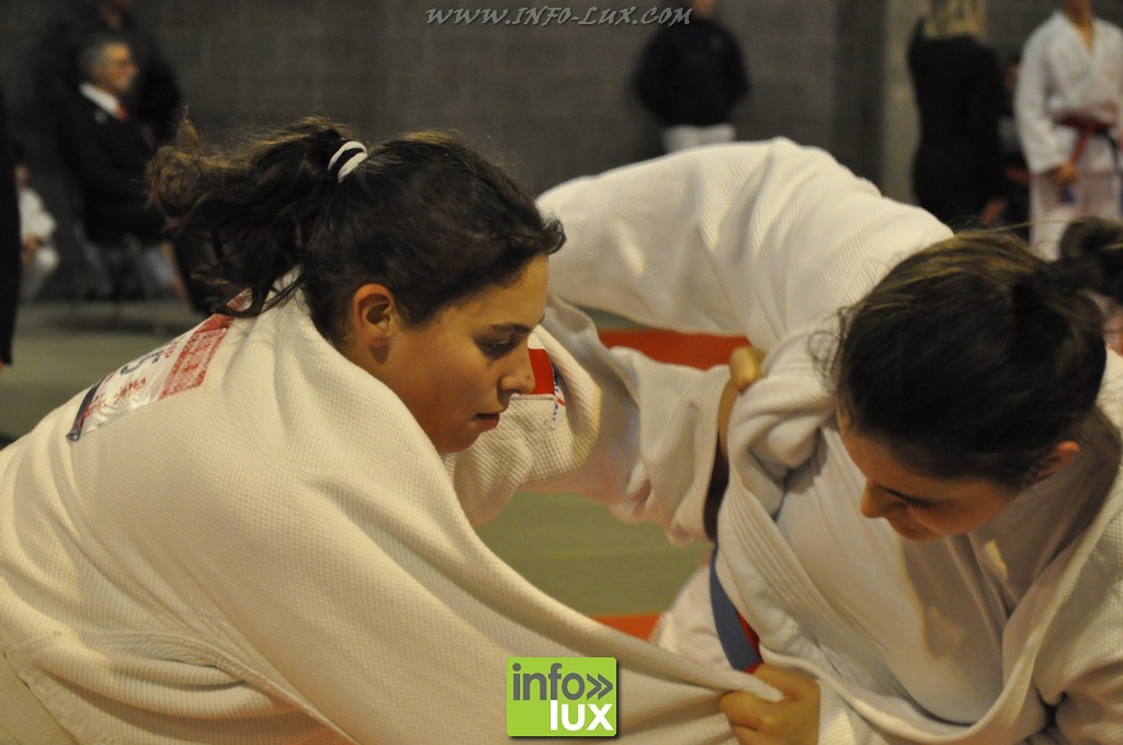 images/stories/PHOTOSREP/Bastogne/Judo2015/Judo-Bastogne10191