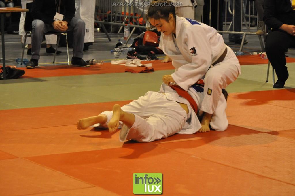 images/stories/PHOTOSREP/Bastogne/Judo2015/Judo-Bastogne10219