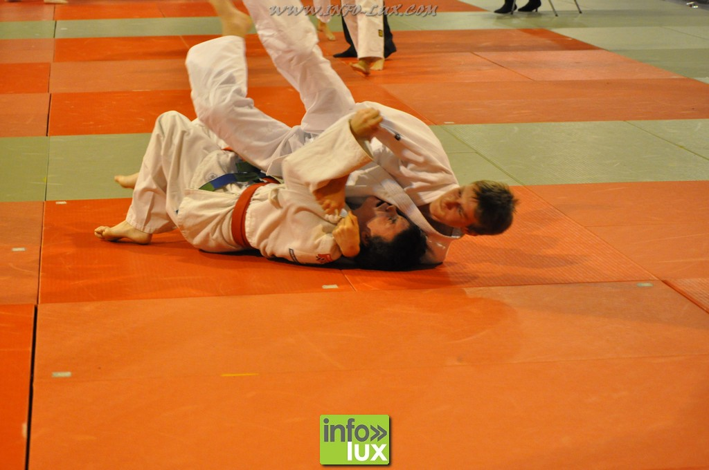 images/stories/PHOTOSREP/Bastogne/Judo2015/Judo-Bastogne10305