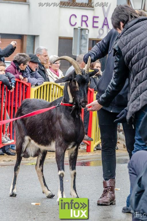 images/stories/PHOTOSREP/Florenville/Chasses/fête_de_la_chasse_Muno-27