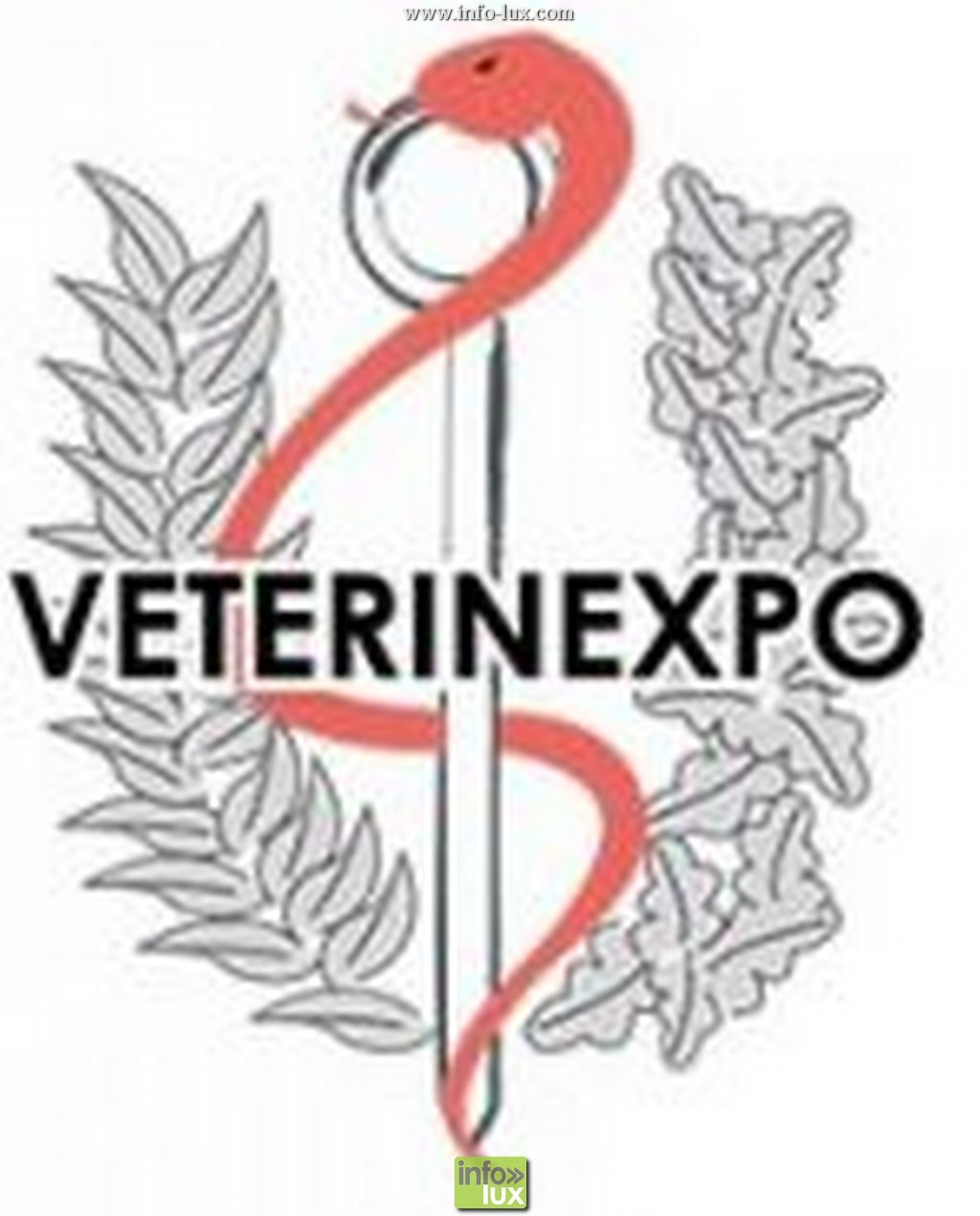 Vétérinexpo – Lec – Libramont