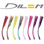 DILEM3 - Copie