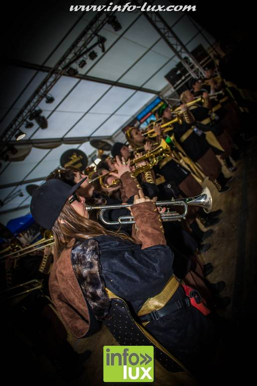 images/stories/PHOTOSREP/2017Mars/Carnavallaroche1/larochecar144