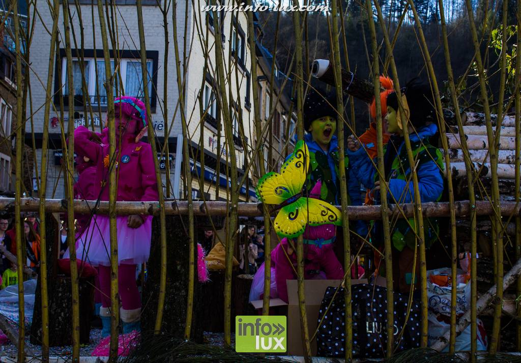 images/Carnavallaroche2017/laroche074