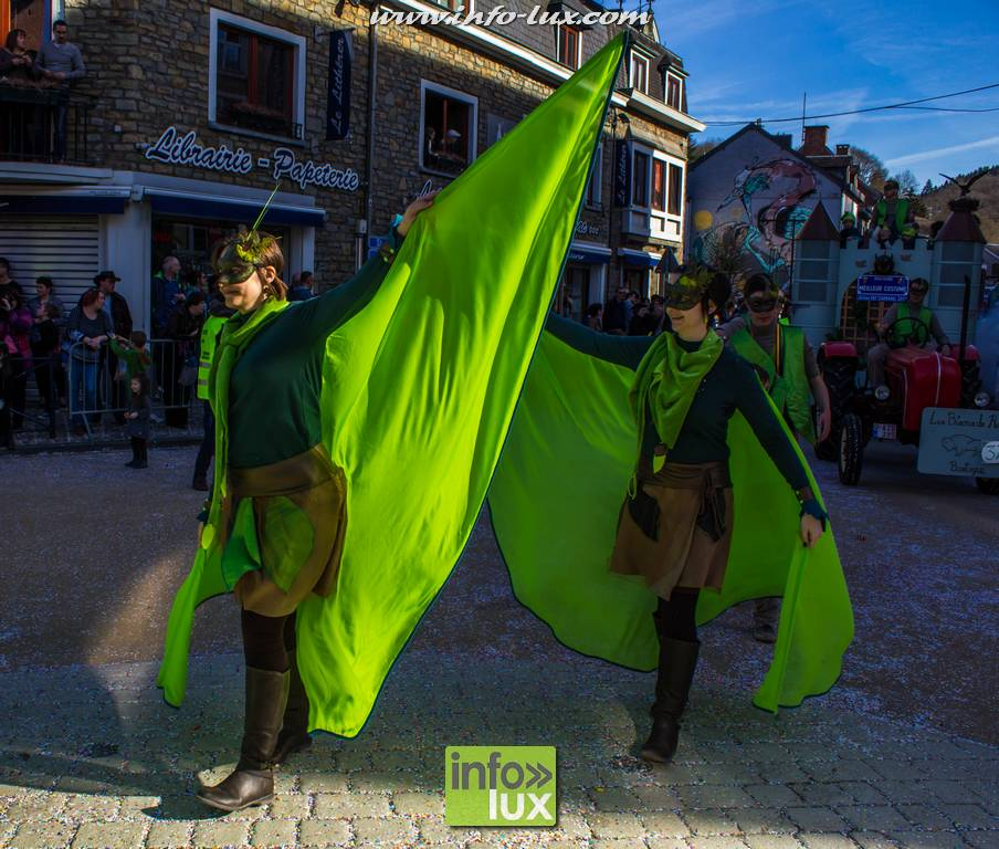 images/Carnavallaroche2017/laroche083