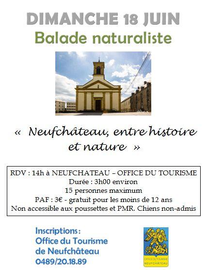 Balade naturaliste à Neufchâteau