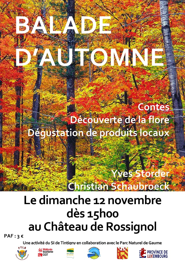 Balade d'automne en Gaume
