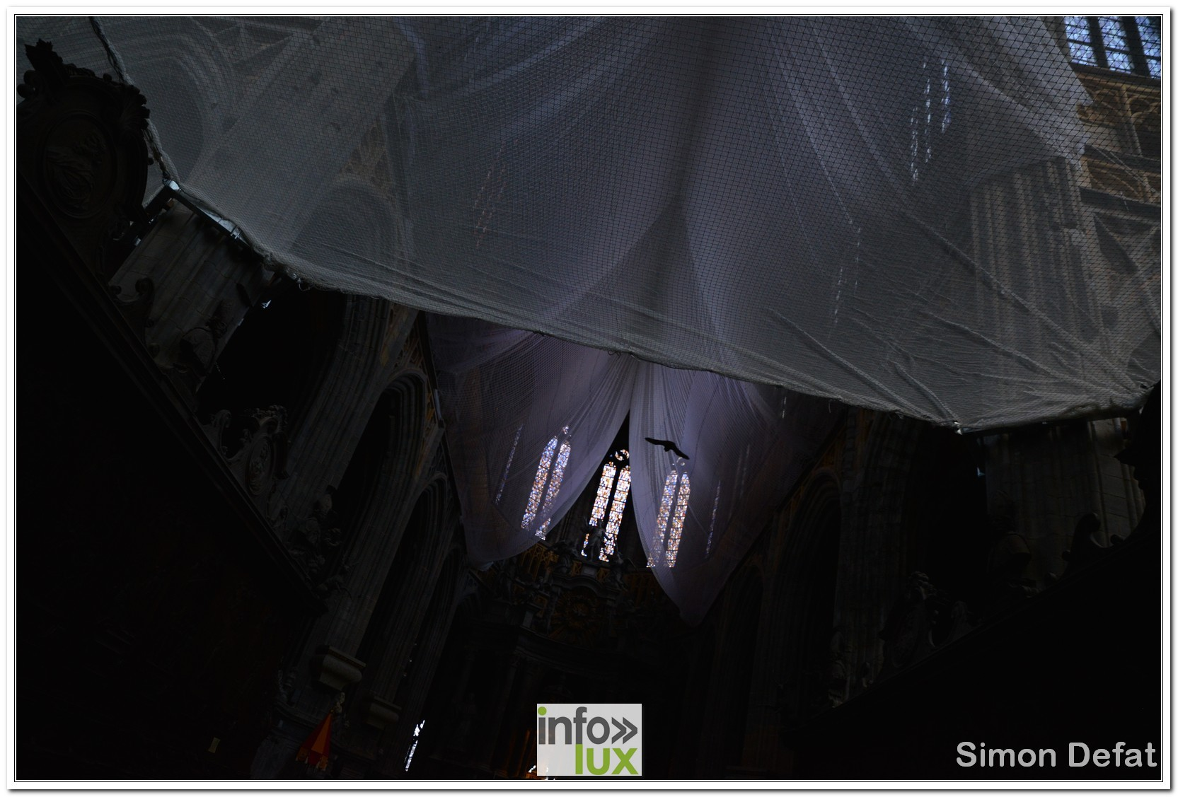 images/2018sainthubertchasse/DSC_1118