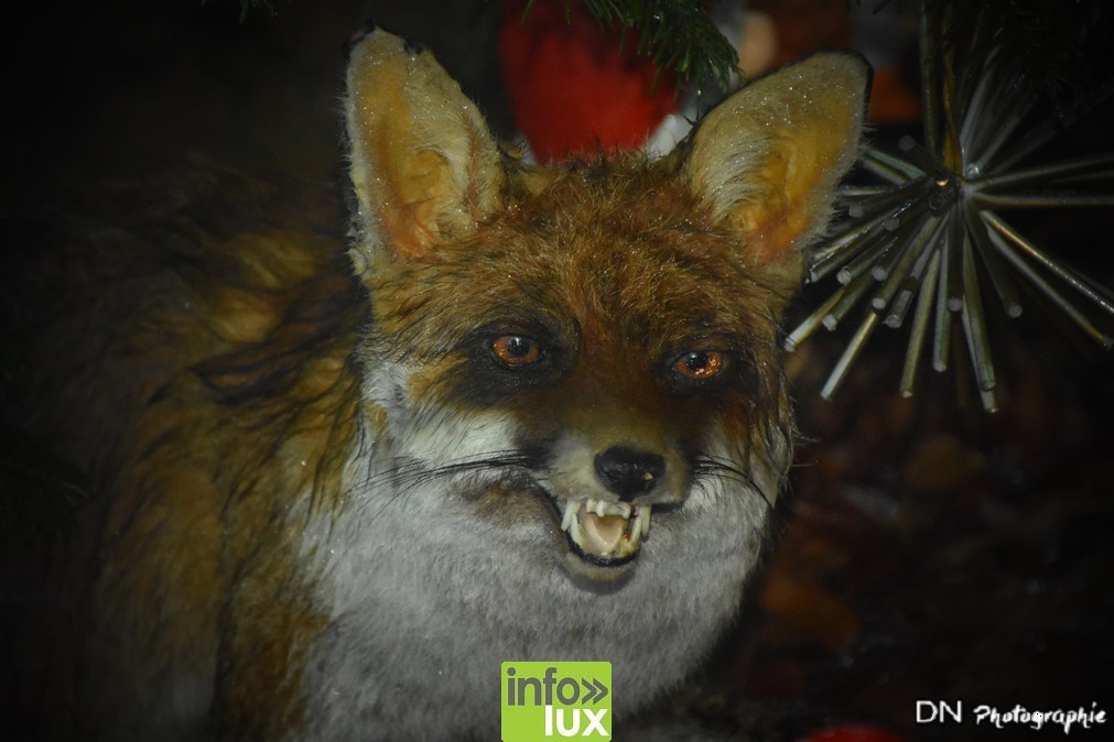 //media/jw_sigpro/users/0000002463/pre nouvel an florenvile/image00112