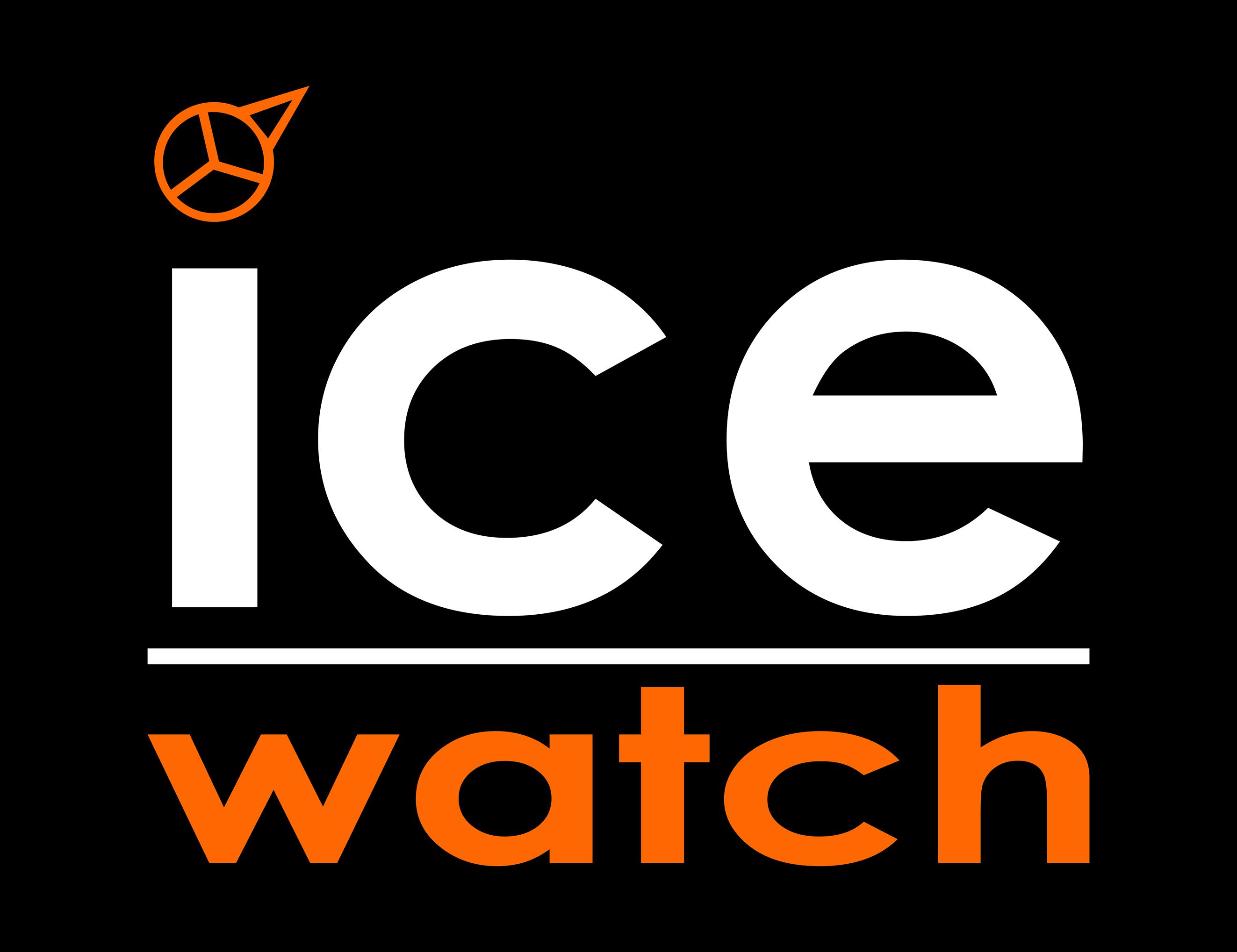 IW Logo White Orange BlackBG