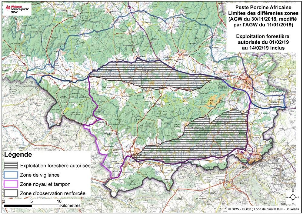 Peste porcine africaine: la gestion des bois scolytés en province de Luxembourg