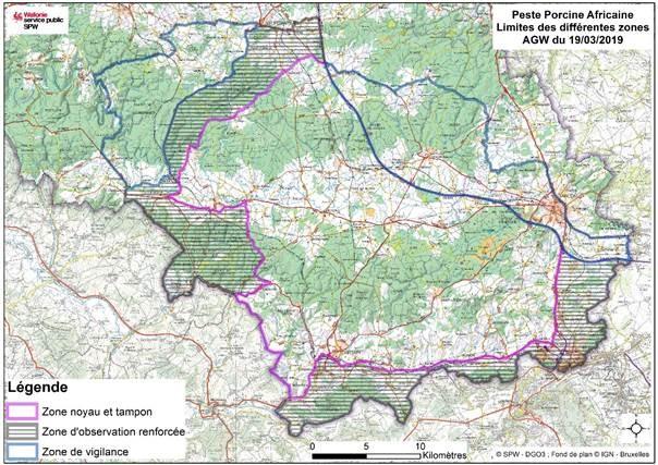 Peste porcine africaine: adaptation de  zone en forêt de Chiny
