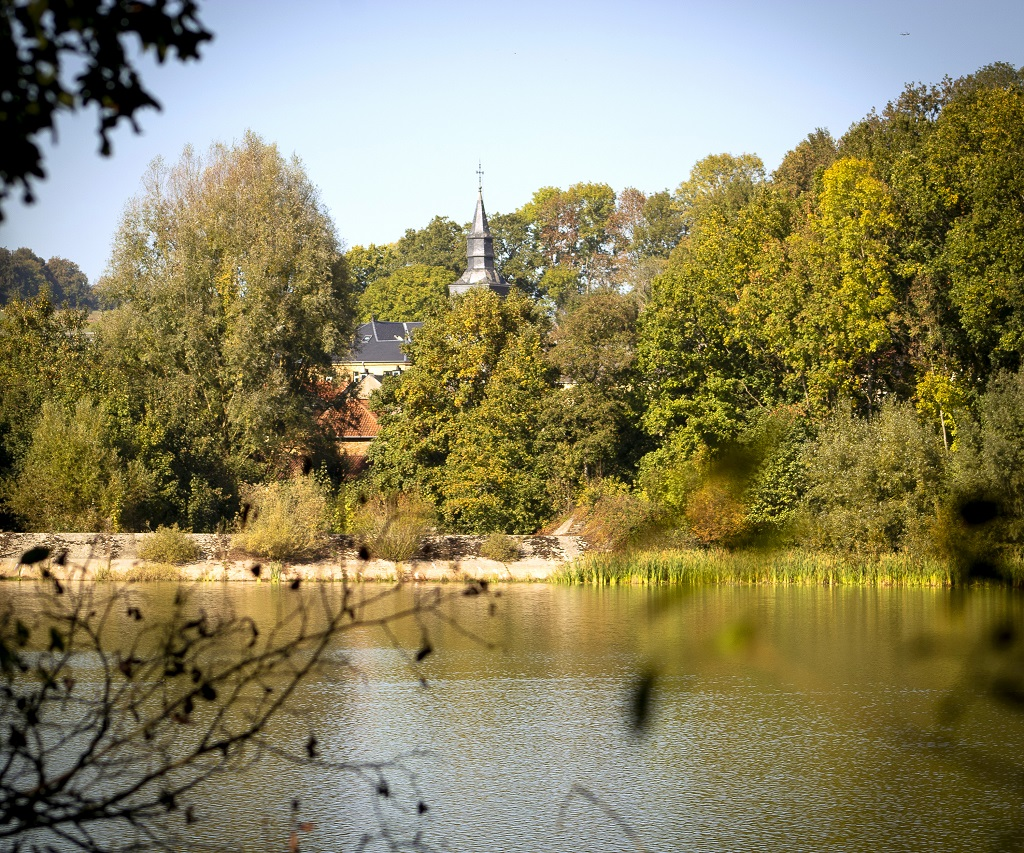 Balade nature aux étangs de Latour– Virton