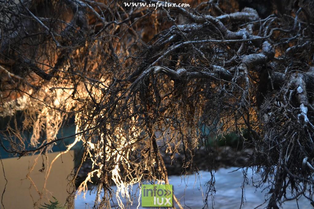 images/stories/PHOTOSREP/Libramont-Chevigny/Foire-libramont2/foirelibramont370