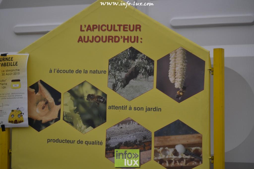 images/stories/PHOTOSREP/Libramont-Chevigny/Foire-libramont2/foirelibramont381
