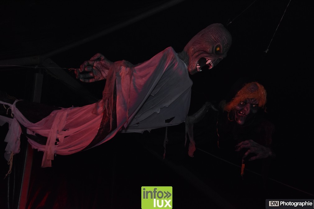 //media/jw_sigpro/users/0000002463/Halloween/image00070
