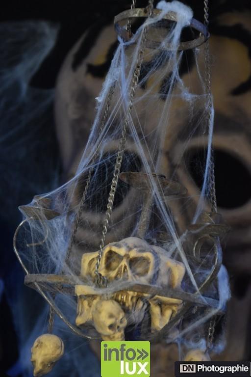 //media/jw_sigpro/users/0000002463/Halloween/image00109