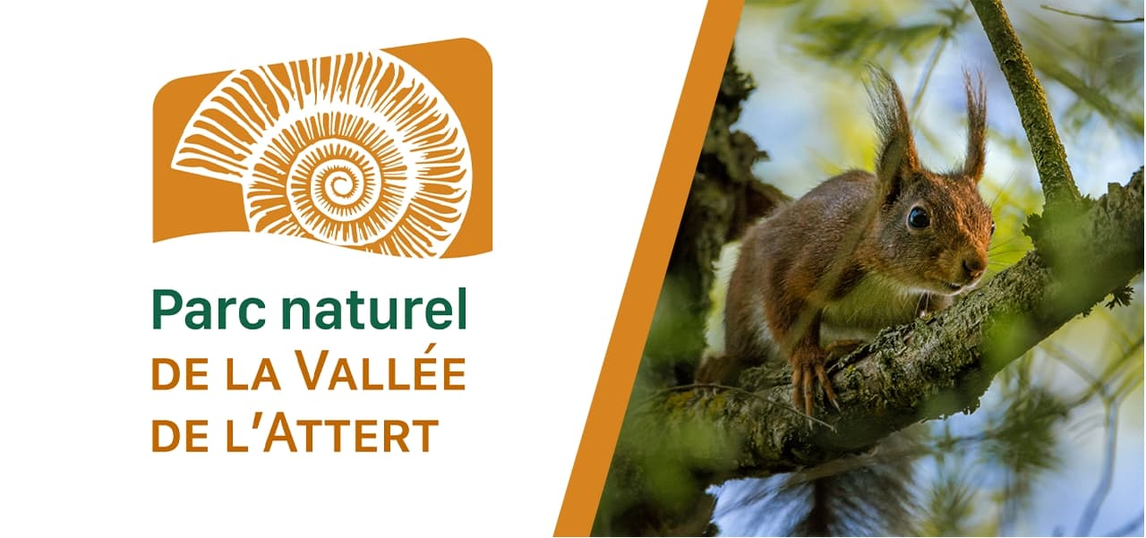 Parc naturel de la Vallée de l'Attert