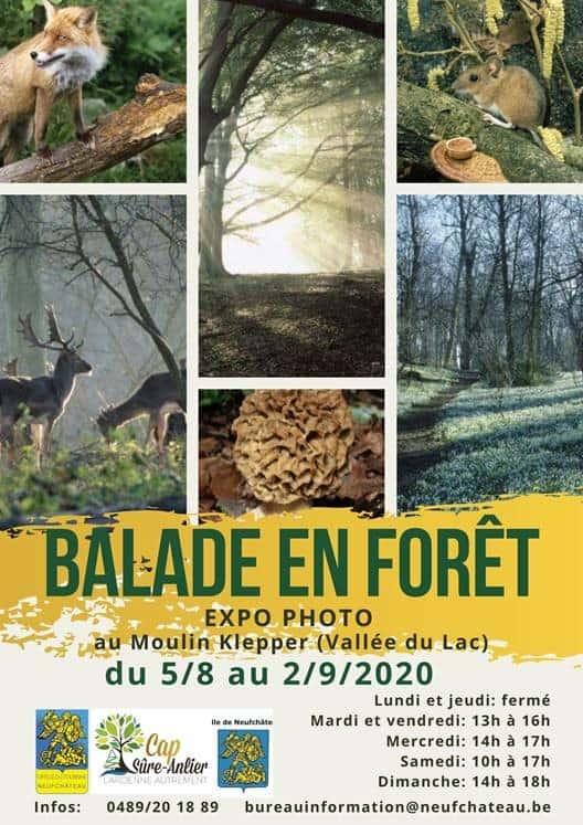 Promenade en forêt d'Anlier  – Neufchateu