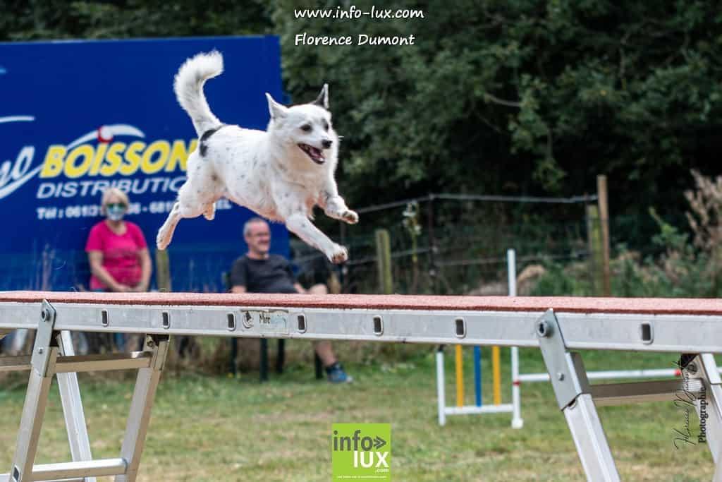 Concours Agility au club canin de Florenville
