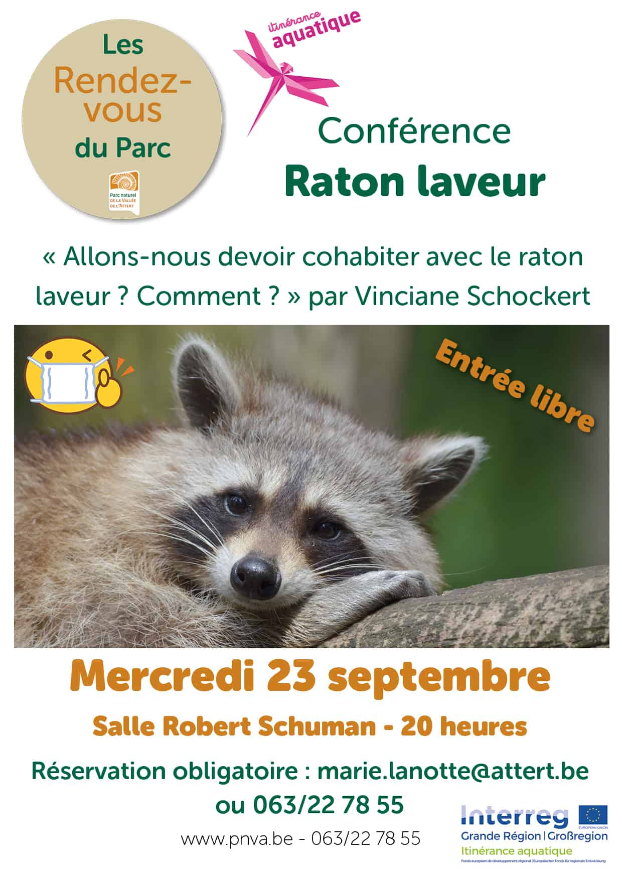 Raton Laveur en Province de Luxembourg