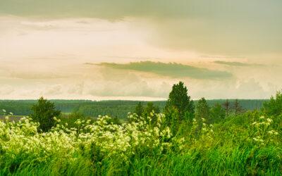 La Wallonie investit dans la ruralité