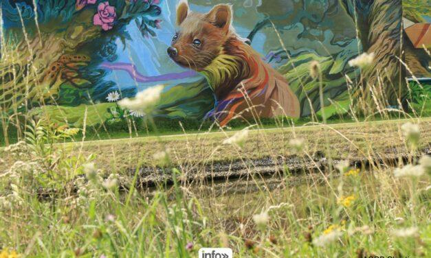 street art : La Foret MAgic